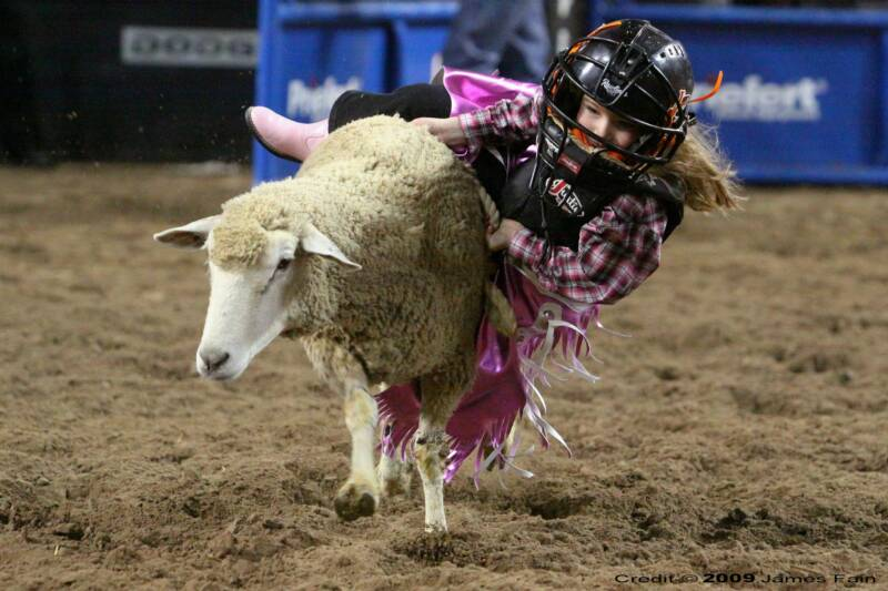 Lent is like … a round of Mutton Bustin