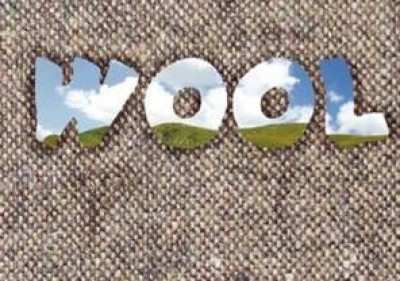Book Review: Wool