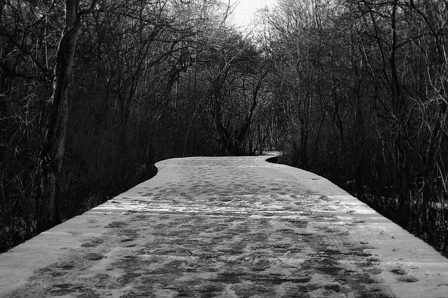 Advent: A Journey Through Winter