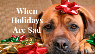 When Holidays Are Sad